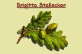 Stallecker Brigitta